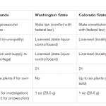 Verden: reguleringsforslag for produksjon og salg av cannabis