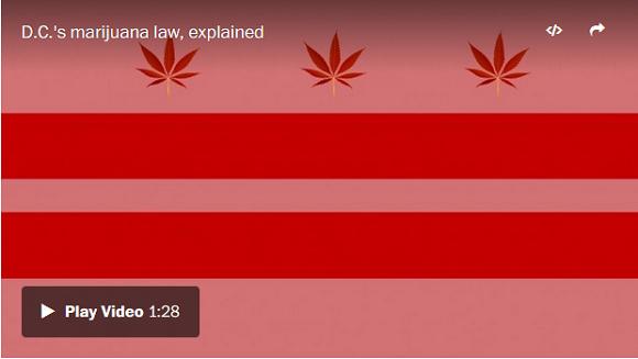 Washington DC law explained