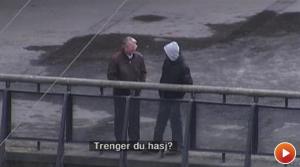 Stang Oslo aug13