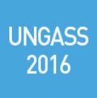 Norges arbeid frem mot UNGASS 2016